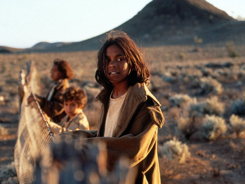 <strong>Rabbit Proof Fence</strong>
